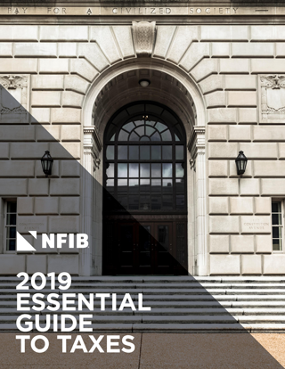 2019 Essential Guide to Taxes