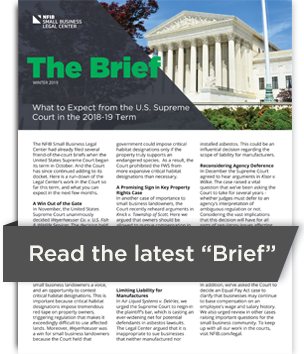 The Brief Newsletter